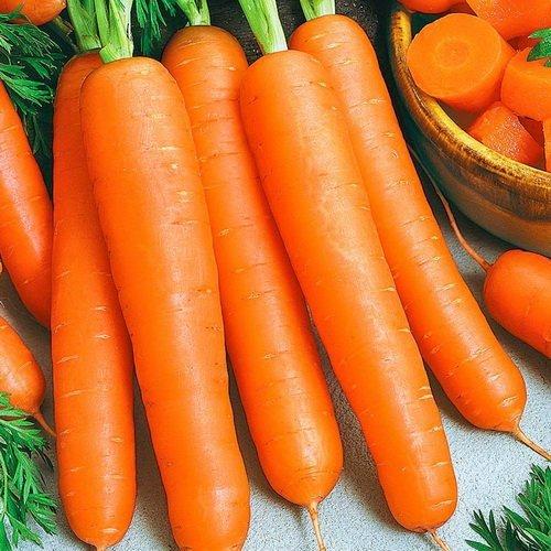 Морковь Неговия F1