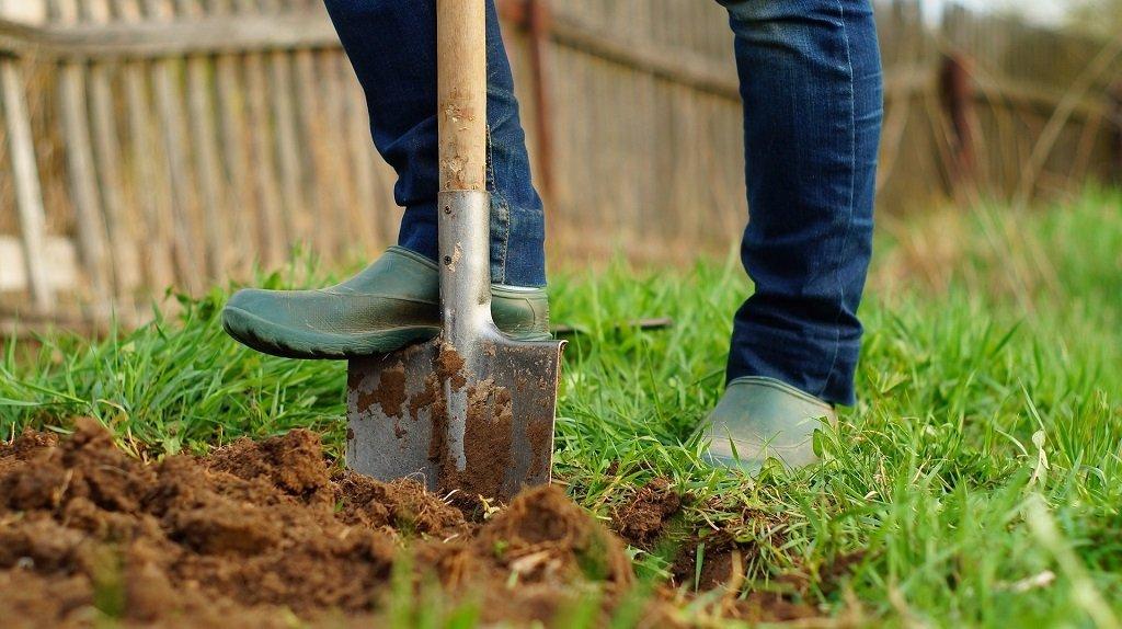 Подготовка почвы и грядок